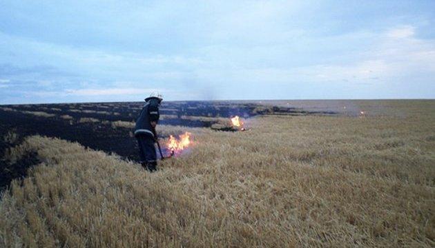 Спасатели назвали 12 областей, где сохраняется чрезвычайная опасность пожаров