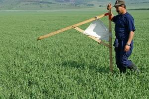 Милованов пояснив, що є найкращим захистом від тіньових схем на ринку землі