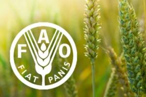 Індекс продовольчих цін FAO впав до 17-місячного мінімуму