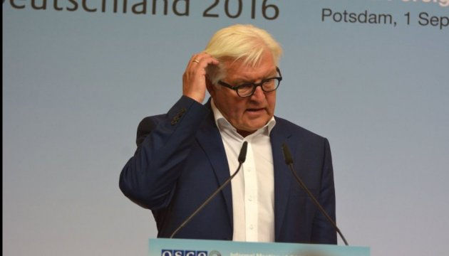 Steinmeier supports CoE initiative on monitoring in Crimea