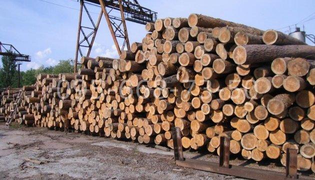 Держстат: В Україні майже на чверть збільшилась заготівля лісу-кругляка