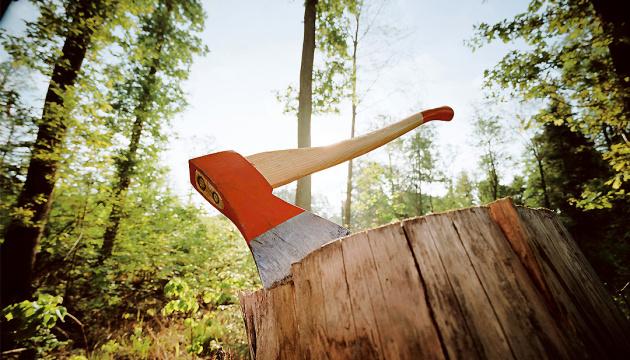 Porochenko a opposé son veto à la loi contre l'exploitation illégale des forêts et la contrebande du bois
