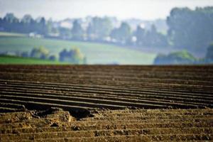 В Україні будуть якісні земельні кадастри - Гончарук анонсував перезйомку території