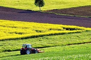 Уряд планує врегулювати порядок створення Фонду розвитку сільських територій