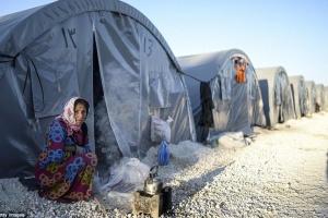 С начала турецкой операции количество переселенцев в Сирии достигло 180 тысяч