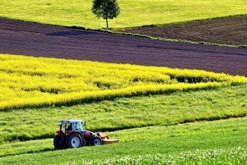 Аренда сельхозугодий: Эксперты исследовали стоимость в регионах