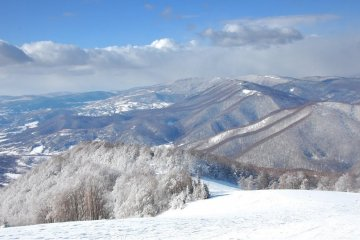State Emergency Service warns of avalanche danger in the Ukrainian Carpathians