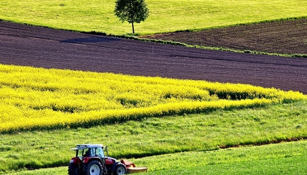 Kyiv to host expert discussion on launch of land market in Ukraine
