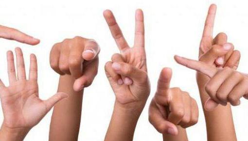 В Украине для изучения жестового языка запустили Телеграмм канал