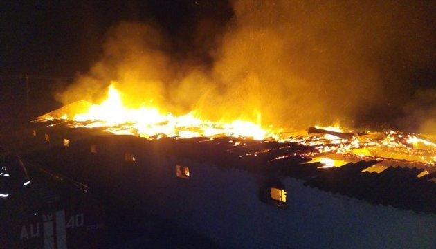 Під Києвом 50 пожежників гасили склад меблів