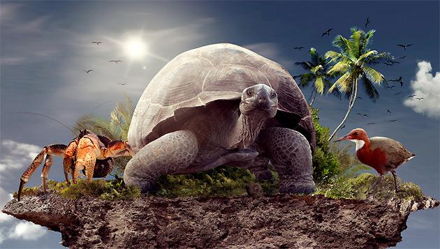 Фото: aldabra3d.com
