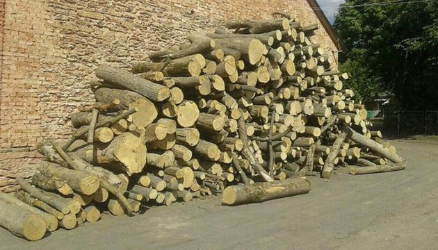 Сайт Президента оприлюднив указ про збереження лісів