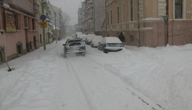 Негода в Чернівцях: в заметах та під зламаними деревами - понад 60 авто