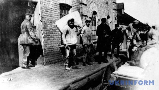 Много документов о Голодоморе в архивах до сих пор не открыты - Гриневич