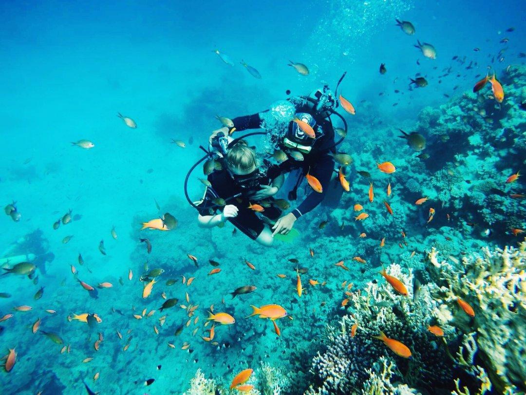 Погружение с аквалангом во время экскурсии по острову Тиран