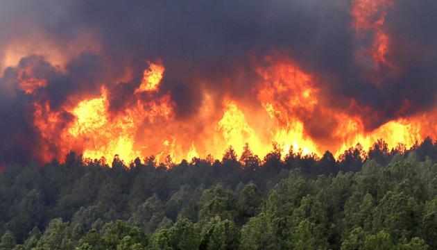 Лісові пожежі в Чилі: загинув вже четвертий пожежник