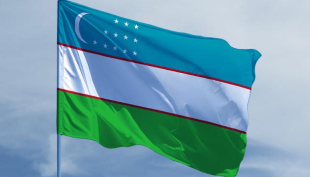 Украина и Узбекистан возобновят регулярное авиасообщение