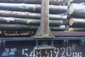 L'UE demande l'ouverture de consultations avec l'Ukraine au sujet de l'interdiction d'exportation du bois