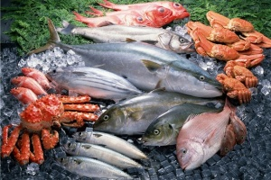 Ucrania aumentó un 25% sus exportaciones pesqueras en 2019