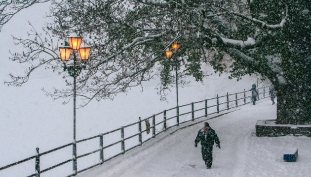Strong wind, snowstorm expected in Ukraine today; avalanche danger remains in Carpathians