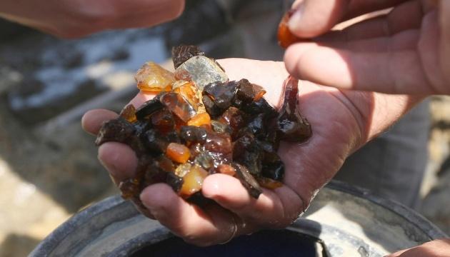 За два года в Украине легально добыли 5,6 тонны янтаря - Госгеонедра