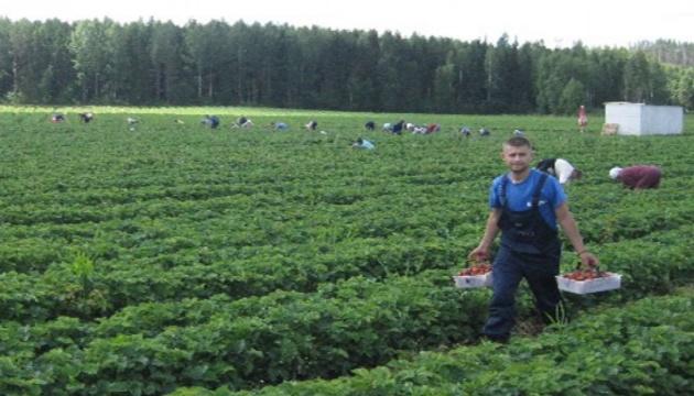 В Польше не хватает рабочих рук