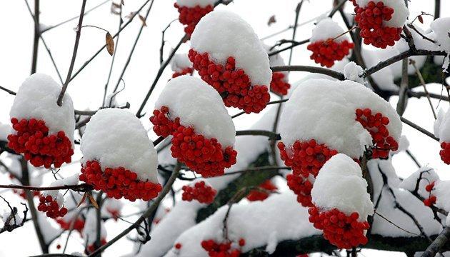25 січня: народний календар і астровісник