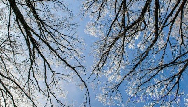 Снежный день. Видеоуроки «Elifbe»