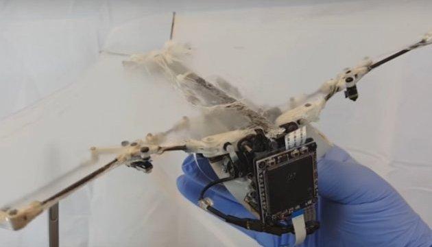 Вчені створили унікального робота-кажана