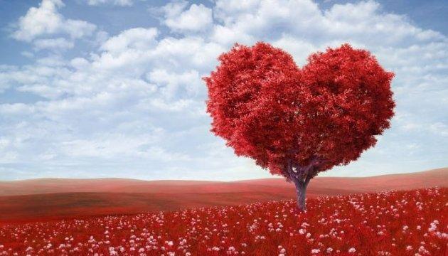 Гид для нестандартного празднования Дня святого Валентина на выходных