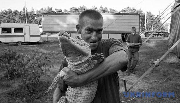 У Києві заборонили цирки-шапіто