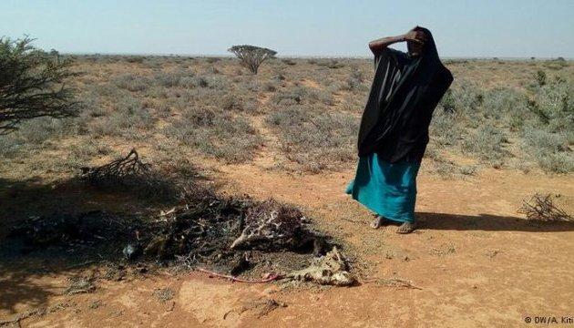 Сомалі загрожує голод, президент оголосив надзвичайний стан