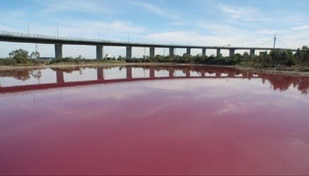 Магия природы: в Австралии целое озеро стало розовым