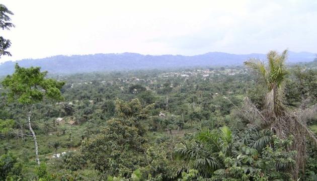 У заповіднику на сході Конго невідомі вбили 12 єгерів