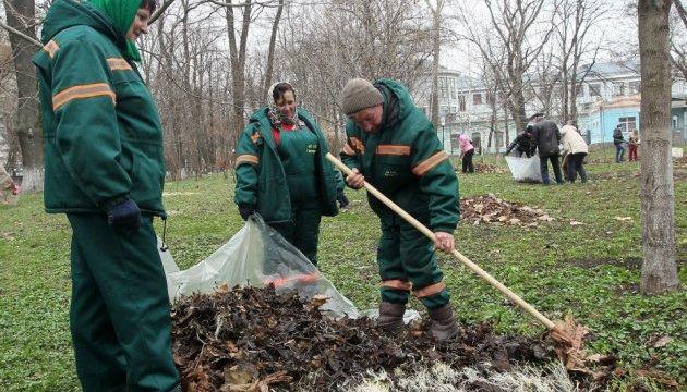 У Києві влаштували толоку