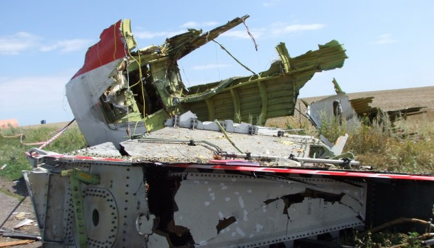 Россия фейковым сайтом пыталась повлиять на мнение голландцев по MH17 - МВД