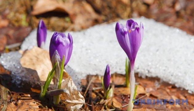 Синоптик сказала, коли в Україну нарешті прийде весна