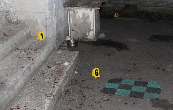 Фото: Отдел коммуникации полиции Ровенской области