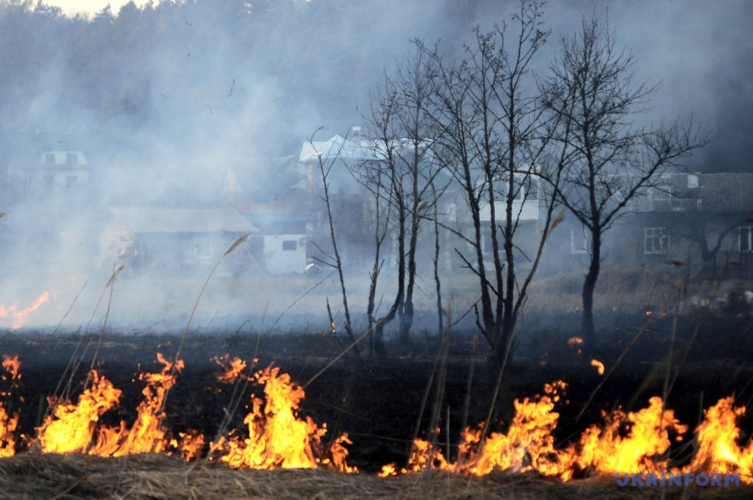 Картинки по запросу пожежа екосистема