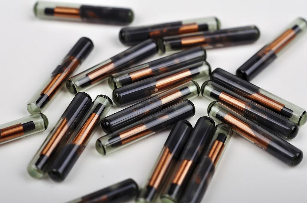 Шведская компания вживила магнитные чипы 150 сотрудникам
