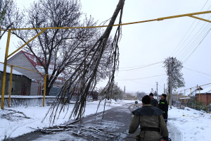 Bad weather leaves 56 towns in three Ukrainian regions without electricity