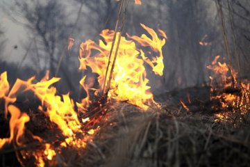 Emergency Service warns Ukrainians of fire hazard in some parts of the country