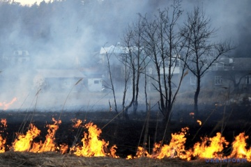 Пожары в Хорватии удалось взять под контроль - премьер