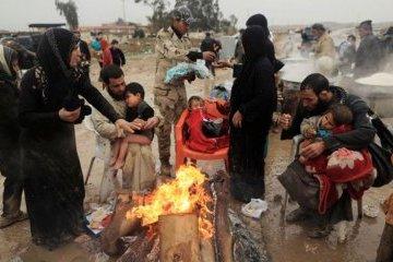 Париж и Берлин обещают поддержать Ирак в восстановлении страны