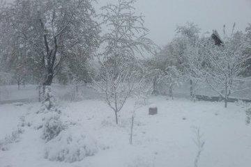 Аномальные снегопады в Молдове: Филип объявил тотальную мобилизацию
