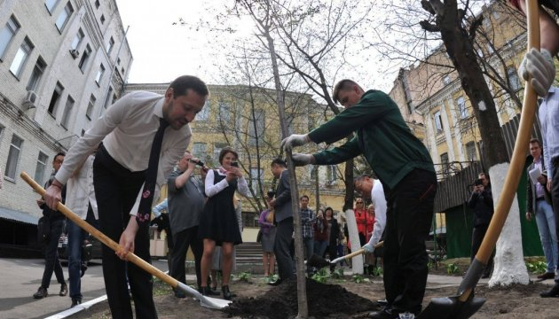 2,500 cherry blossoms for Ukraine: Ambassador of Japan plants tree in Ukrinform agency's yard