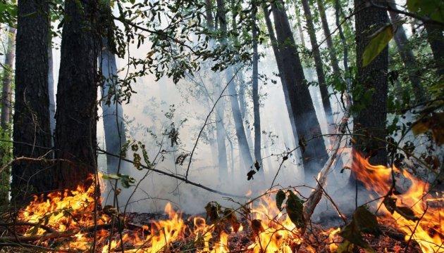 Extreme fire hazard expected in ten regions of Ukraine – State Emergency Service