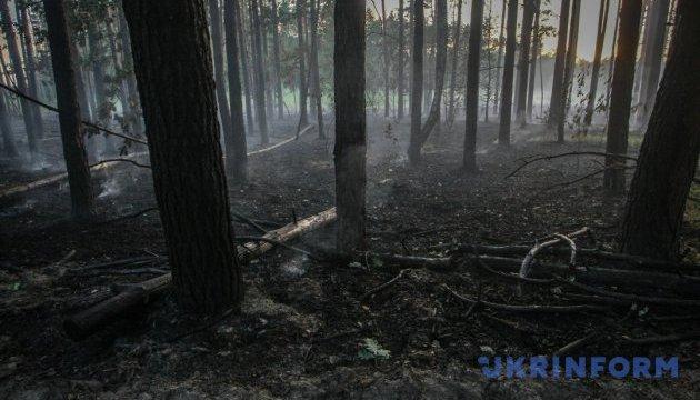 Держлісагентство пропонує збільшити у 10 разів штрафи за підпали й вирубування