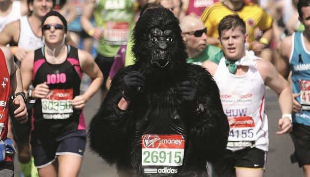 Бігаємо, косплеїмо, смакуємо: марафон фестивалів на вихідних