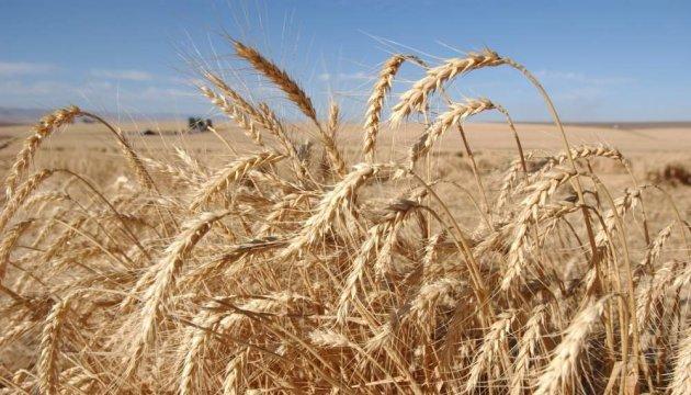 Ukraine, Argentina to cooperate in agricultural sector